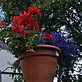 Jardins fleuris 2011