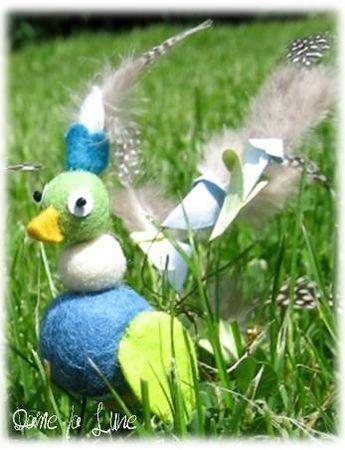 oiseau_bleu