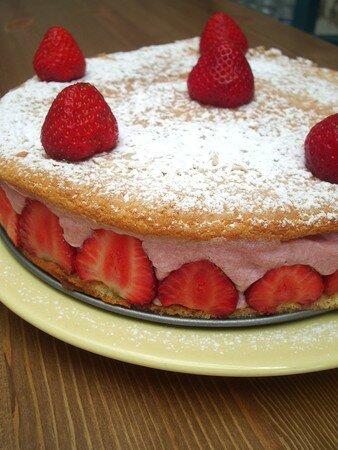 fraisier2