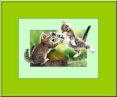 Photo filtre encadrement cadre simple et 65 vert pale opacité 100 COPIER COLLER SUR 1 IERE PHOTO RECADRER ET FILTRE CONTOUR ENCRER FILTRE RELIEF DOUBLE