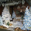 Noël GALIN 2008 040