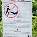 Attention ! dans les Everglades