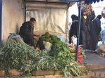 maraîcher Rue Sellanine FES Maroc