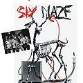 Skymaze en concert à saint-gence : vendredi 17 avril 19h30