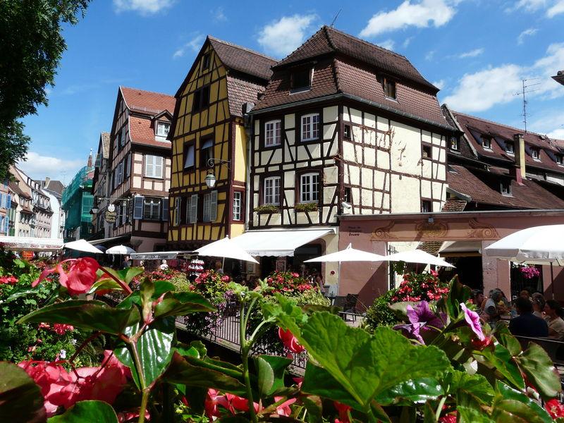 18_Sp_cialit_s_r_gionales___Alsace___Brochettes_de_rattes_sur__cume_de_Munster