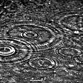 Il pleut il mouille...