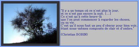 CLAIR_OBSCUR__Christian_BOBIN_