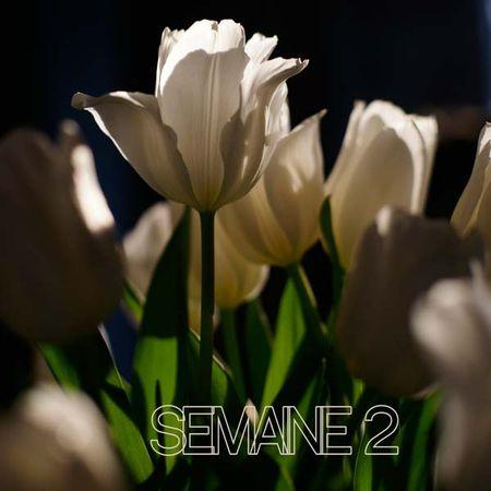 Semaine_2_1