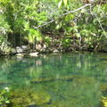 Xel-Ha: parc naturel