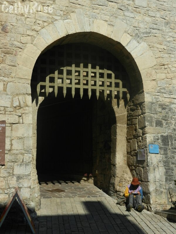 && Sévérac le château (1)