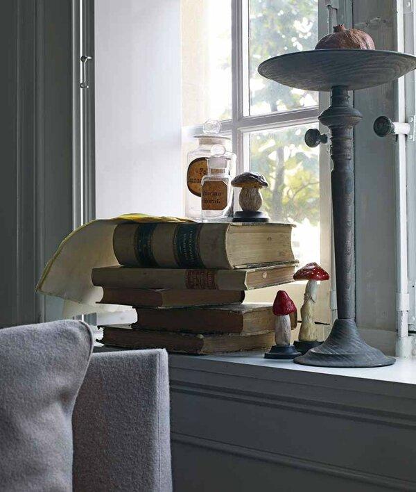 H&D gris et champignon