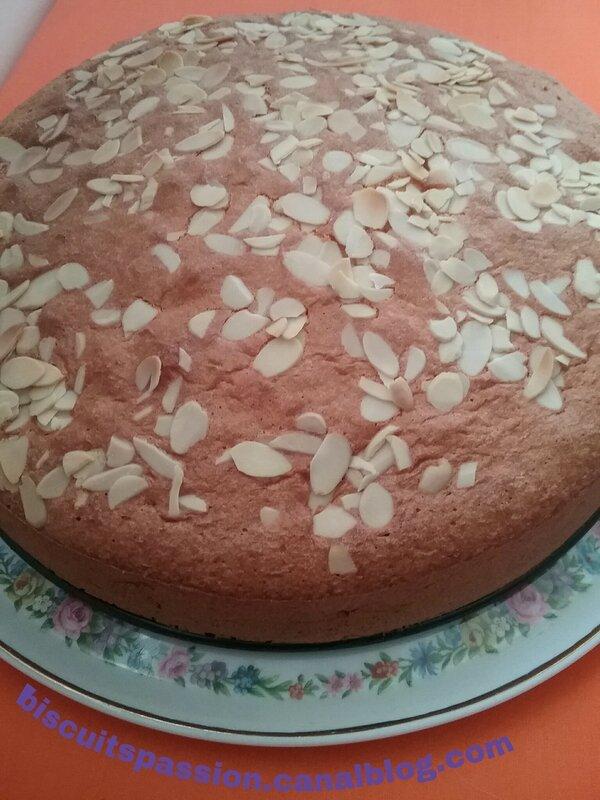 Gâteau abricots 044