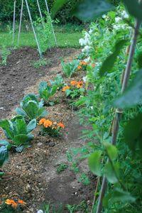 Omonville et le jardin des près 183