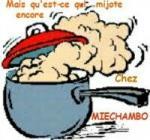 casserole mijote1