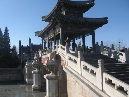Beijing_Lunar_New_Year_2009_276