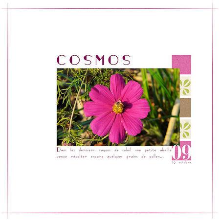 Cosmos1_F