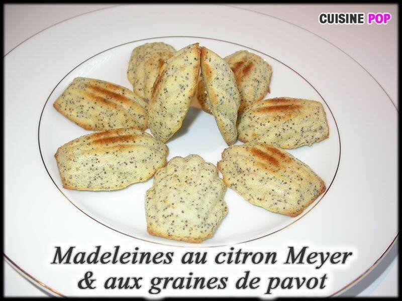 madeleines au citron meyer aux graines de pavot cuisine pop recettes v g tariennes. Black Bedroom Furniture Sets. Home Design Ideas