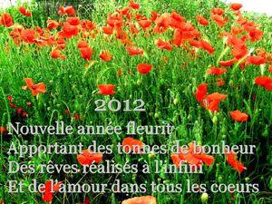 BONNE ANNEE 2012 - coquelicots