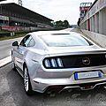 MustangV8_copyrightTasunkaphotos2016_02