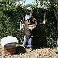 Mounaques_apiculteurs 2009 08 30e