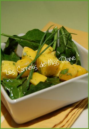 SALADE__PINARDS_MANGUE
