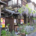 Japon 2010 355
