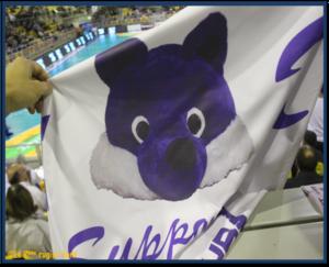 05 Mascotte blue fox