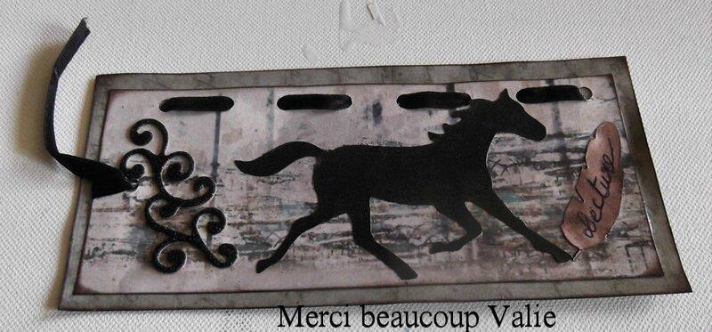 10 DSCF1164 RECUS DE VALIE