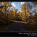 Windows-Live-Writer/Couleurs-dautomne-canadien-suite_13F87/IMG_9252-naturelimages