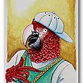 Animaux habillés : le perroquet rappeur