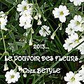 Le pouvoir des fleurs 5