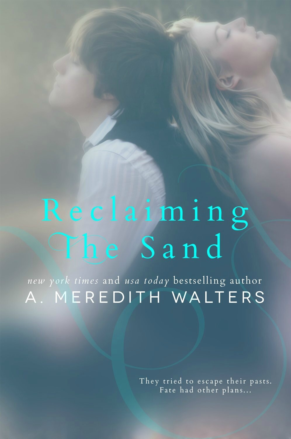 Reclaiming the sand #1 de Meredith Walters