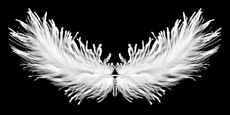 ange plumes et noeuds de voiture les anges se marient aussi. Black Bedroom Furniture Sets. Home Design Ideas