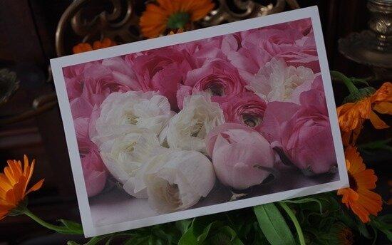 carte Floralie