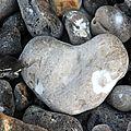 Coeur Le Tréport_5142