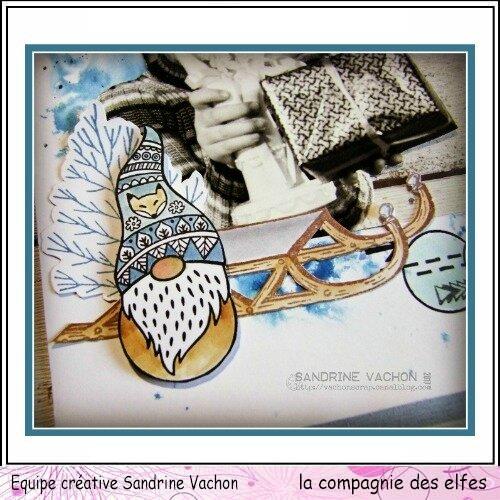 Sandrine VACHON 1er déc dt LCDE (6)