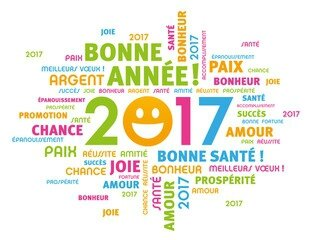 MES RESOLUTIONS POUR 2017 !