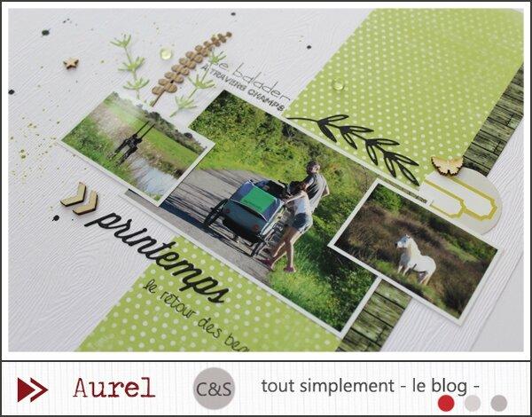 140515 - Printemps - Bois_2_BLOG