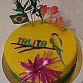 Gâteau thème brésil !!
