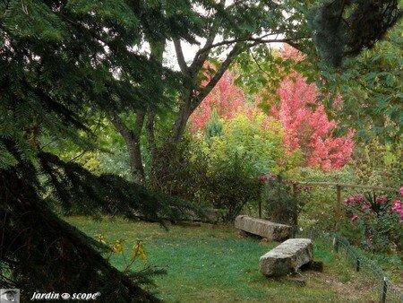 Parc Botanique du Prieuré d'Orchaise