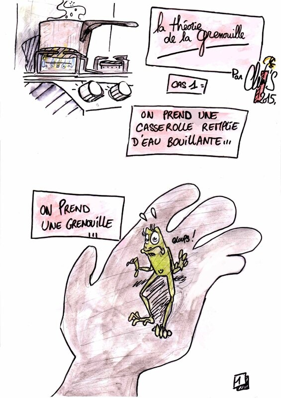 théorie-de-la-grenouille-p1-colo3-001