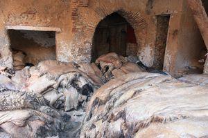Stockage des peaux Fondouq Labbata FES Maroc