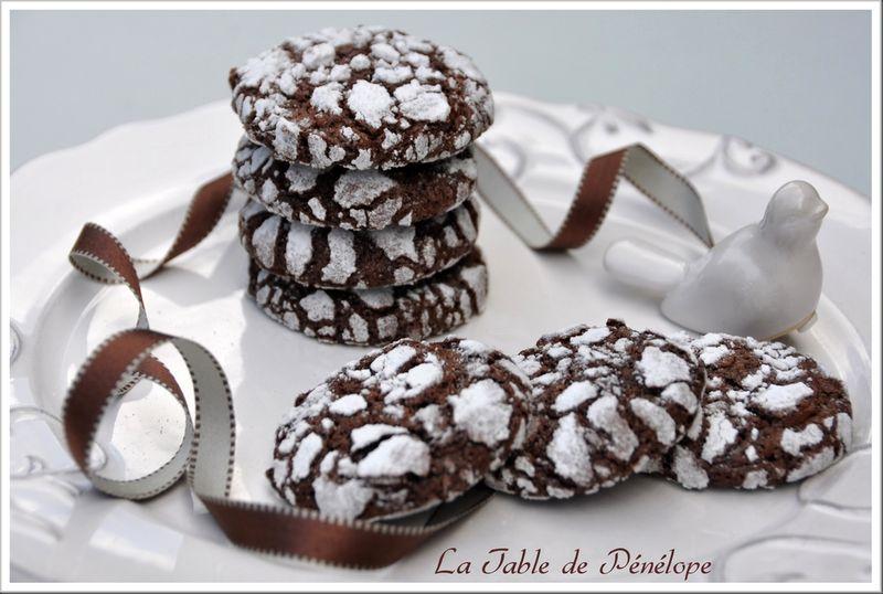 Biscuits_craquel_s_au_chocolat_1