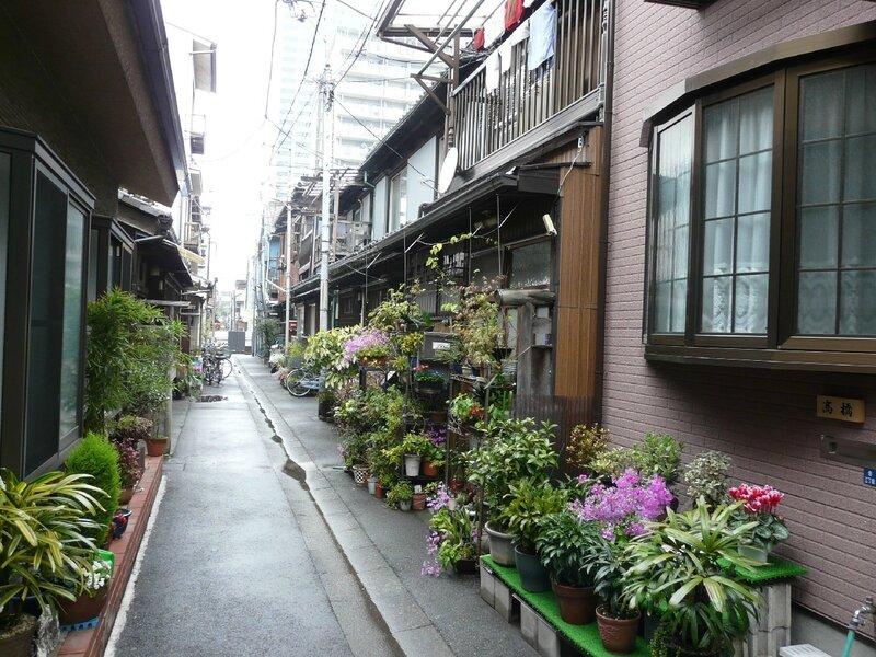 Canalblog Tokyo Tsukishima Plantes01