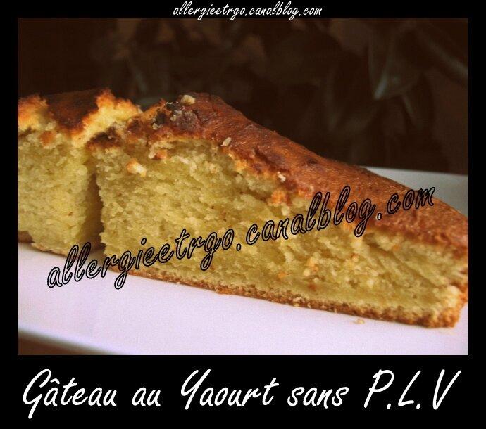 Gâteau au yaourt sans plv