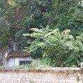 Saintes (17), quai des Roches