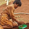 36 - Cambodge - Le Ratanakiri