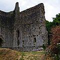 Chateau-de-Domfront--Domfront 4