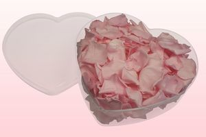 Heart_Shaped_Transparent_Box_With_Baby_Pink_Preserved_Rose_Petals