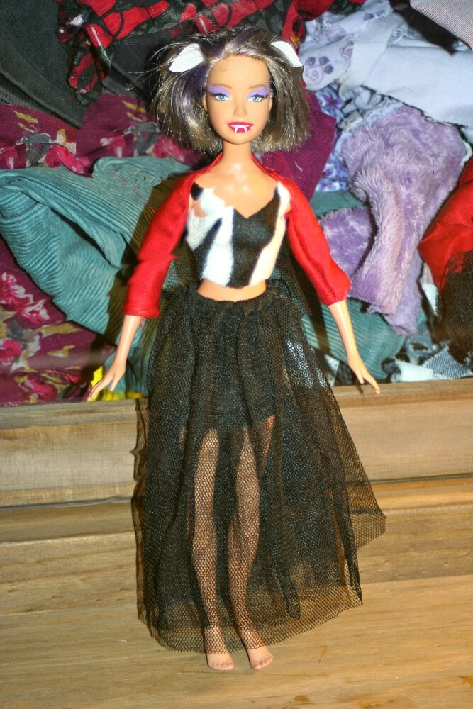 C 39 tait mercredi on a transform une barbie en monster - Comment faire une chambre monster high ...
